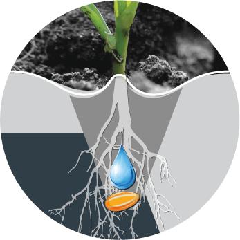 Fertilizer, micro granular, inoculants and herbicide application options | www.equalizer.co.za